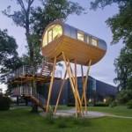 Casa da árvore com design inovador (Foto: Divulgação)