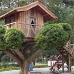 Casa da árvore muito bem montada (Foto: Divulgação)