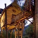 Quem nunca sonhou em ter uma casa na árvore? (Foto: Divulgação)