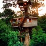 A casa da árvore para adultos pode ser montada em uma altura maior (Foto: Divulgação)