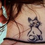 Gatinho tatuado na nuca. (Foto:Divulgação)