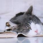 Pausa na leitura (Foto: Divulgação)