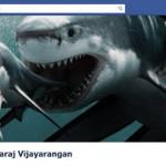 Na boca do tubarão (Foto: Divulgação)