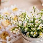 As margaridinhas são delicadas, simbolizam a inocência e combinam com o casamento. (Foto:Divulgação)