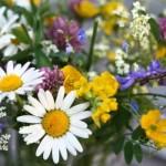As flores do campo deixam o casamento jovem, alegre e colorido. (Foto:Divulgação)