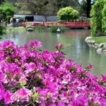 As florzinhas deixam os ambientes mais delicados. (Foto:Divulgação)