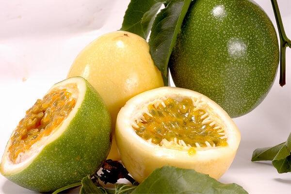 A passiflora é muito conhecida por suas propriedades calmantes. (Foto: divulgação)