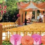 Cerimônia de casamento no campo. (Foto:Divulgação)