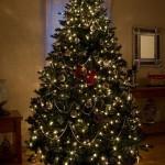 A árvore de Natal moderna teria surgido por volta do século XVI (Foto: Divulgação)