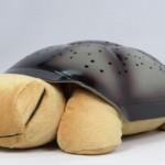 Abajur tartaruga musical por R$ 64,99. (Foto:Divulgação)