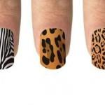 Estampa de tigre, onça e zebra. (Foto:Divulgação)