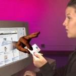 Países com mais fraudes envolvendo cartões de crédito