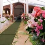 Flores decoram o ambiente da cerimônia. (Foto:Divulgação)