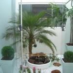 Os jardins de inverno podem ser feitos em apartamentos. (Foto: divulgação)