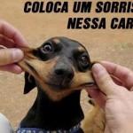 Recomente um sorriso no Facebook. (Foto:Divulgação)
