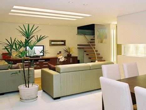 Sala de estar decorada com planta de sombra. (Foto:Divulgação)