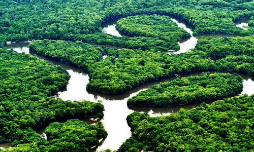 Aprecie a Amazônia durante o passeio dos seus sonhos (Foto: Divulgação)