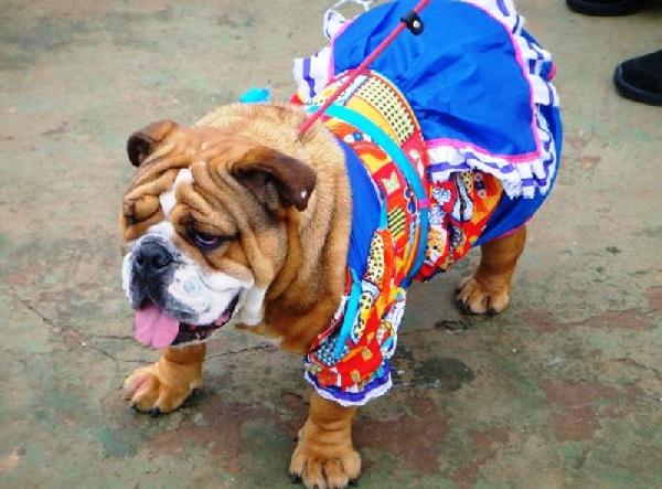 Vestido com avental (Foto: Divulgação)