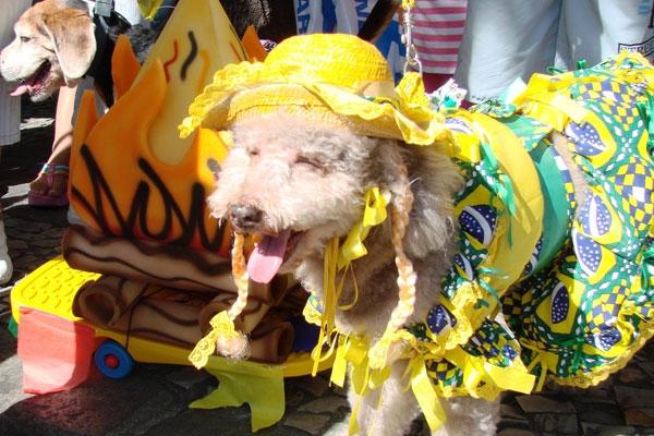 Vestido com babados amarelo e colorido (Foto: Divulgação)