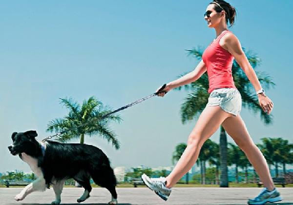 Passear com seu cão faz muito bem para ambos (Foto Divulgação: MdeMulher)