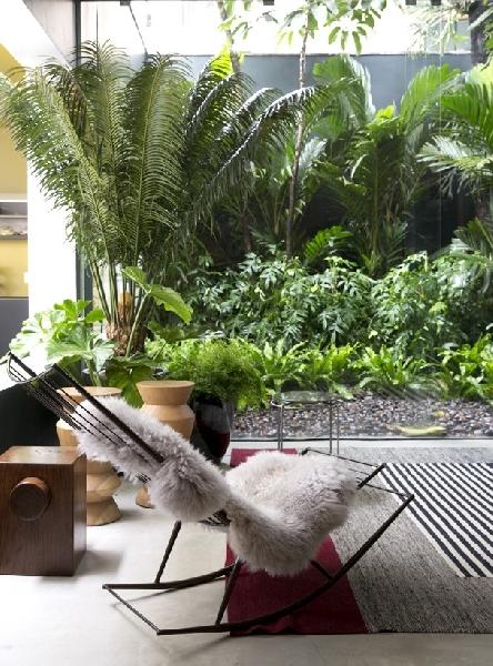 As plantas devem ser de acordo com o ambiente (Foto: Divulgação: Casa Vogue)