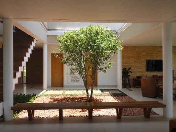 Planta no centro da peça (Foto Divulgação: Casa Linda)