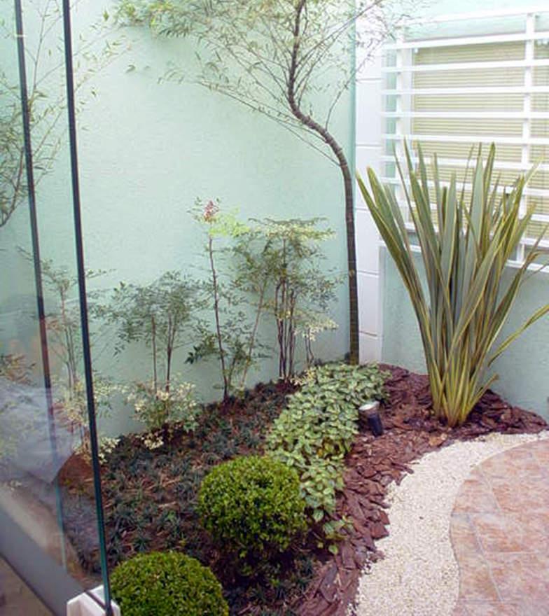 plantas jardim baratas:Plantas pequenas combinam com o ambiente (Foto Divulgação: Casa