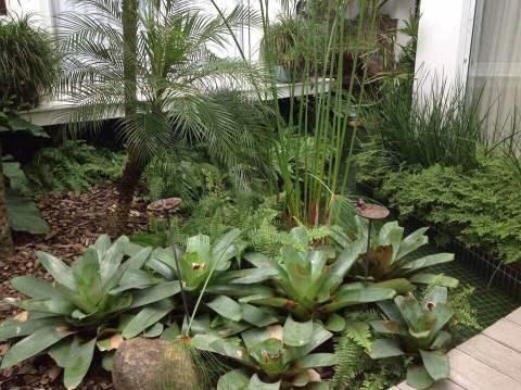 Muitos verdes deixam o ambiente clean (Foto Divulgação: Casa/Abril)