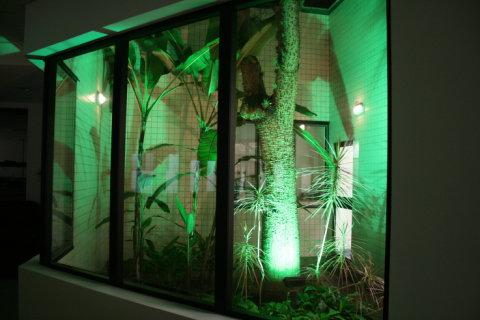 Jardim de inverno com vidro (Foto Divulgação: Casa/Abril)