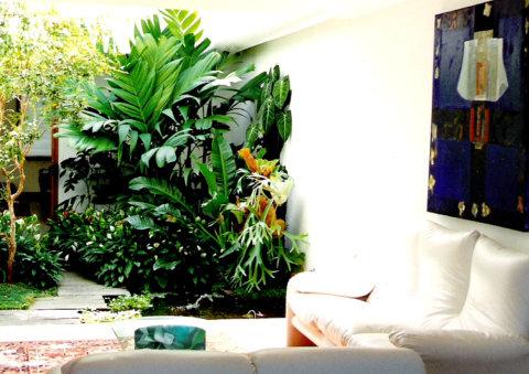 Jardim de inverno com ligação ao meio ambiente (Foto Divulgação: Casa/Abril)