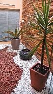 Jardim de Inverno: 50 fotos incríveis para fazer em casa!!