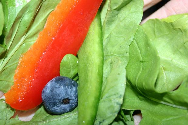 A dieta vegetariana e o seu lado negro (Foto: Divulgação)