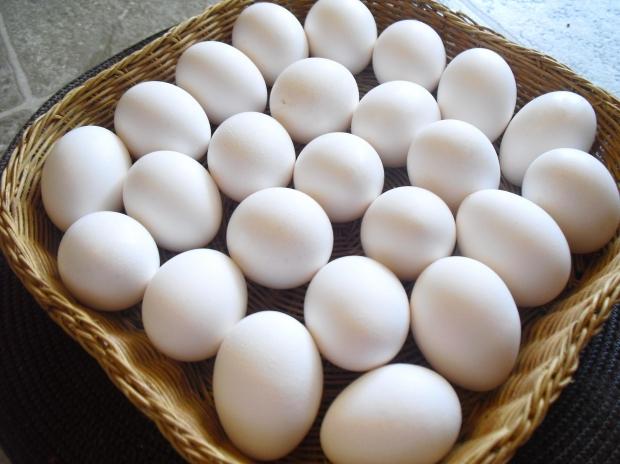 Ovos são vendidos em caixas (Foto: Divulgação)