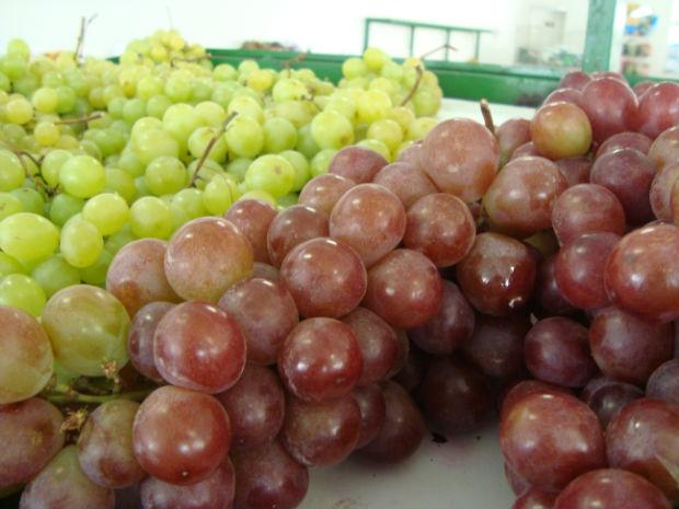 Uva tem sido bem menos consumida por conta da alta no preço da fruta (Foto: Divulgação)