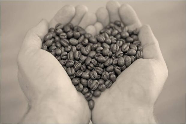 Feijão possui nutrientes importantes (Foto: Divulgação)