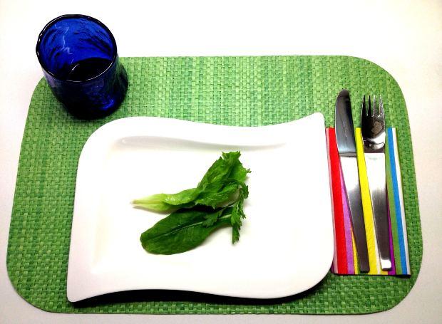 Reeducação alimentar é fundamental para uma dieta eficaz (Foto: Divulgação)