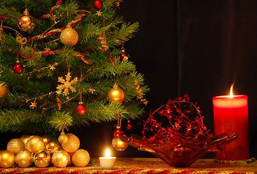Árvore de natal é símbolo da data (Foto: Divulgação)