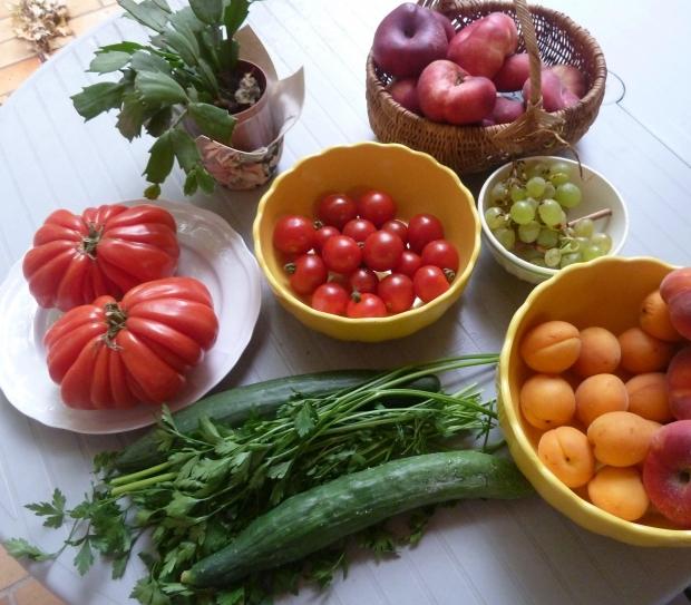 Ser Vegetariano é Ser Saudável (Foto: Divulgação)