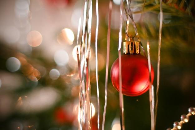 O Natal é uma grande data, veja como fazer muitas coisas nessa época do ano (Foto: Divulgação)