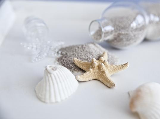 Estrelas do mar, conchas e até areia podem fazer parte da sua decoração (Foto: Westwing)