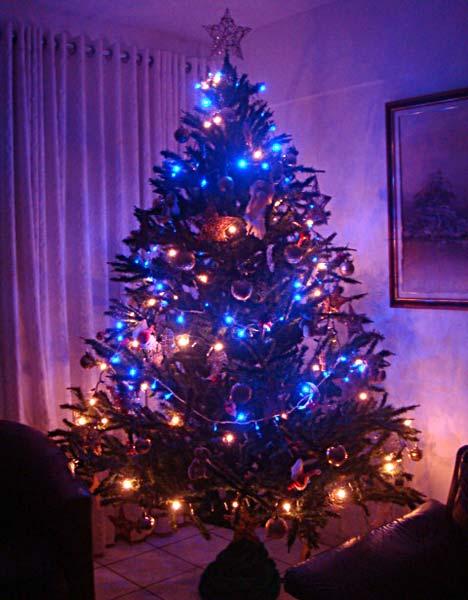 Árvores de Natal diferenciadas (Foto: Casa Abril)