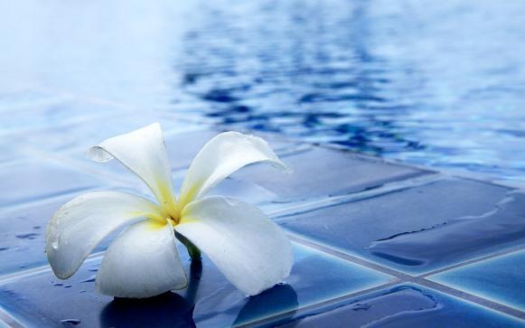Limpe entorno da piscina. (Foto Ilustrativa)