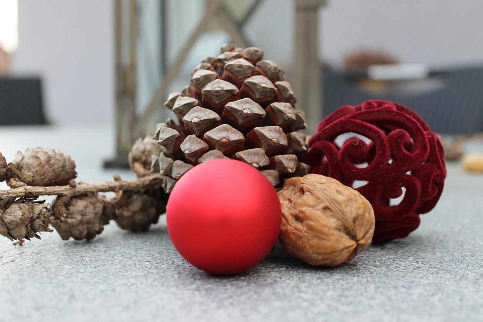 Use o que a natureza te dá para conquistar uma árvore de Natal diferenciada e criativa (Foto: Divulgação)