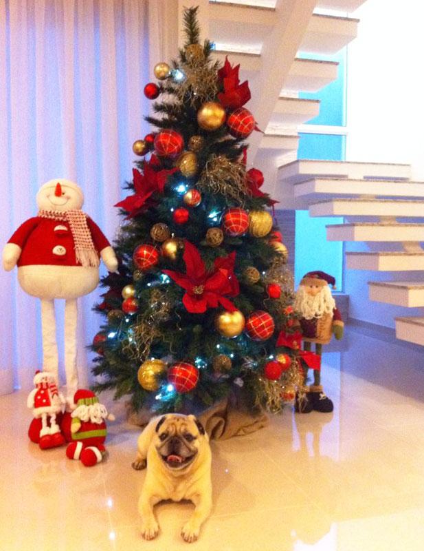 Pinheiro de Natal lindo (Foto: Casa Abril)