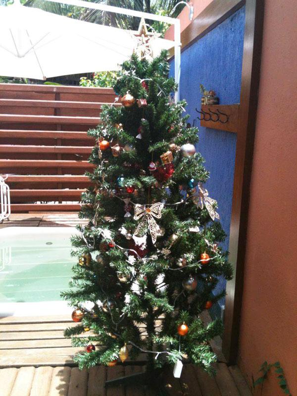 Faça enfeites simples de Natal (Foto: Casa Abril)