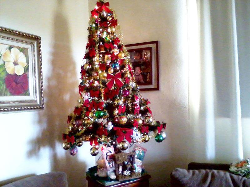 Use enfeites de Natal diferenciado (Foto: Divulgação)