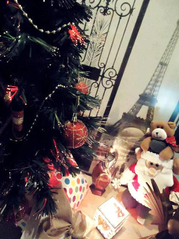 Caixinhas para decorar a árvore de Natal (Foto: Divulgação)
