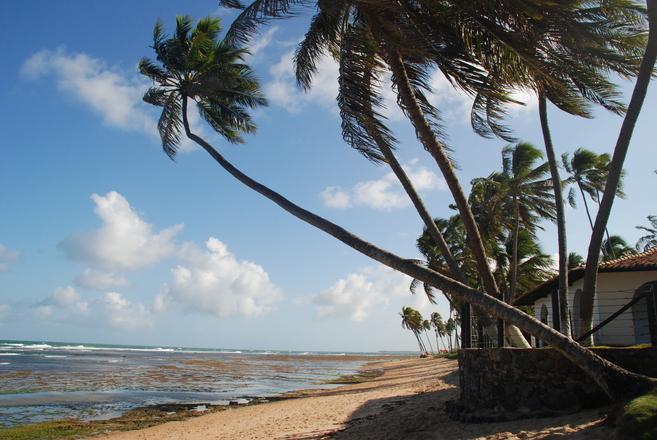 Tranquilidade e natureza também se encontra na Bahia (Foto: Divulgação)