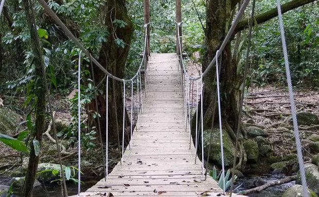 É possível até caminhar e fazer trilhas em Ilha Bela, SP (Foto: Viaje Aqui/Abril)