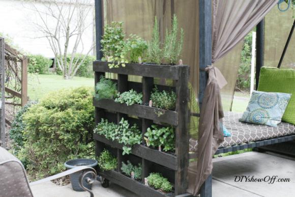 O jardim fica super bonito, compacto e sustentável. (Foto Ilustrativa)